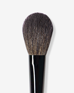 Special Blush Brush 16pi