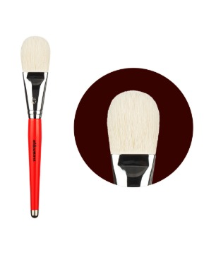 blusher Brush 17pi